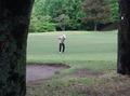 a-golf-3333.jpg