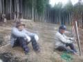 a-bokujyo-4466