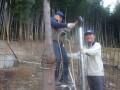 a-bokujyo-4468