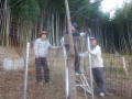a-bokujyo-4471